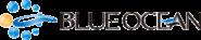 ブルー・オーシャン採用サイト